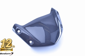 BMW R1200R R1200RS 2015 100% Carbon Fiber Windscreen